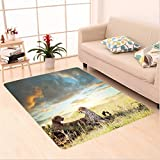 Nalahome Custom carpet wo Cheetahs Africa Nature Grass Dangerous Animals Hunters Rainy Weather Picture Green Blue Ivory area rugs for Living Dining Room Bedroom Hallway Office Carpet (5' X 7')
