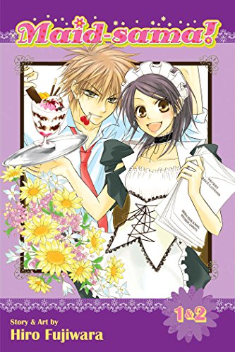 Maid-sama! (2-in-1 Edition), Vol. 1: Includes Vols. 1 & 2 (1)