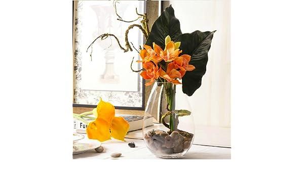 Xin Pang Castañas De Agua Fresca Lin Whelan Emulación Flores ...