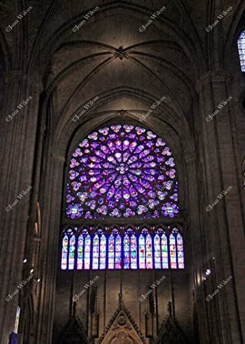 Amazon.com: Interior Notre Dame Cathedral Rose Window