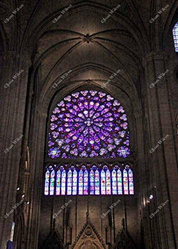 Interior Notre Dame Cathedral Rose Window Stained Glass Paris France Europe Architecture Original Fine Art Photography Wall Art Photo Print