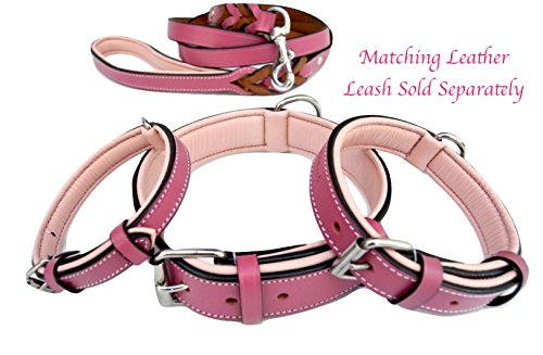 Soft Touch Collars Raspberry Pink Leather Padded Dog Collar, for Large Female Dogs, Made with Genuine Real Leather, Quality Collar That is Stylish, Soft, Strong and Comfortable,24'' Long x 1.5'' Wide by Soft Touch Collars (Image #5)