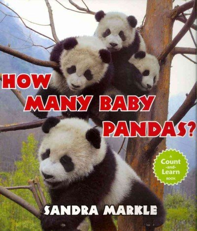 Download How Many Baby Pandas? PDF