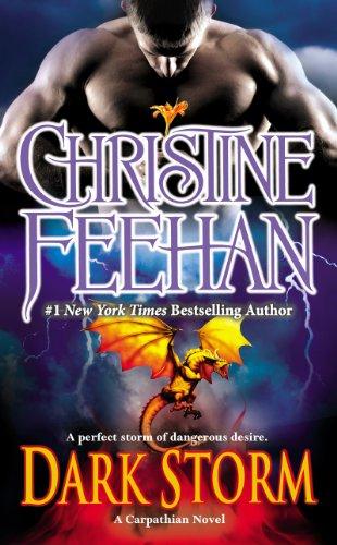 book cover of Dark Storm