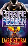 Dark Storm (The 'Dark' Carpathian Book 23) Kindle Edition by Christine Feehan  (Author)