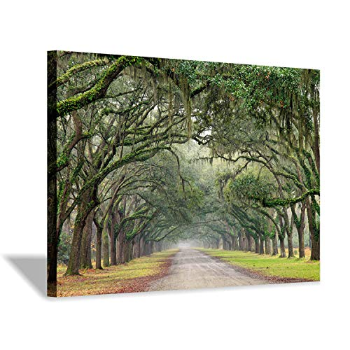 (Green Oak Trees Art Painting: Landscape Artwork Forest Picture Print on Canvas Wall Art for Living Rooms (36