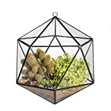 Cheap NCYP Wall Hanging Geometric Terrarium Balcony Tabletop Windowsill Decor Glass Flower Pot Modern Large Indoor Garden Micro Lnadschaft Icosahedron Planter Container for Succulent Air Plant Fern