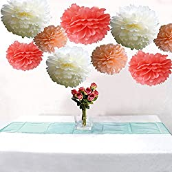 AllHeartDesires Set of 9 Coral Peach Ivory Tissue Paper Pompoms Wedding Flower Birthday Bridal Shower Party Decoration