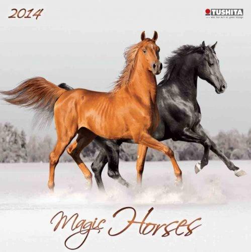 Magic Horses, Broschürenkalender 2014 (What a Wonderful World)