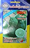 15seeds Thai Kaffir Lime, Citrus Hystrix ,Bai Magrood, Leech Lime Seeds by 3A