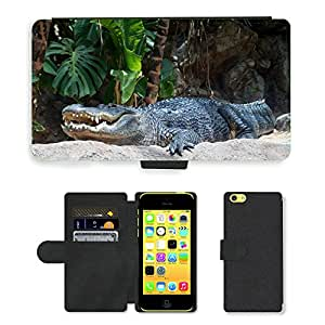 Hot Style Cell Phone Card Slot PU Leather Wallet Case // M00111365 Crocodile Reptile Animal Tooth // Apple iPhone 5C