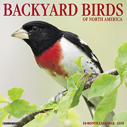 Backyard Birds of North America 2018 Calendar