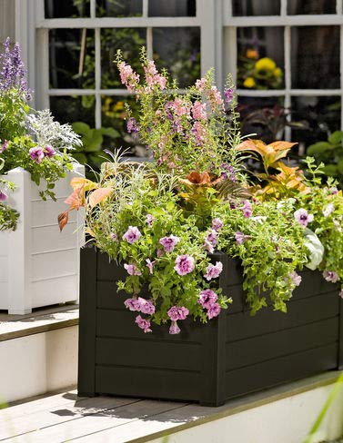 Charmant Terrazza Trough Planter, Black