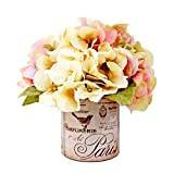 Hydrangea in French Pot, Floral Arrangements
