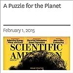 A Puzzle for the Planet | Michael E. Webber