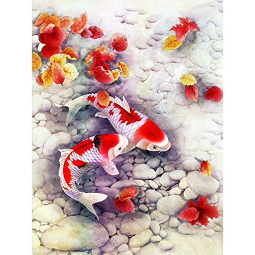Koi Fish 3D Poster Wall Art Decor Print | 11.8 x 15.7 | Lenticular Posters & Pictures | Memorabilia Gifts for Guys & Girls Bedroom | Beautiful Yin & Yang Meditation & Asian Balance Artwork Decorations