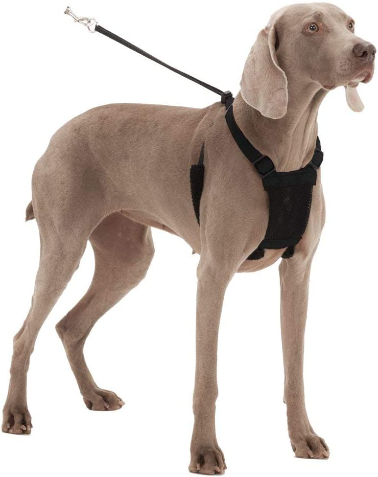 Patented Dog Pull Control Technology by Sporn Easy Step-in Adjustable Mesh Harness for control Dog Harness No pull and No choke humane Design Non Pulling Pet Harness with Mesh vest