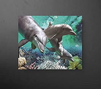 Dolphin Lover Gift Idea