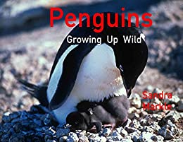 PENGUINS Growing Up Wild by [Markle, Sandra]