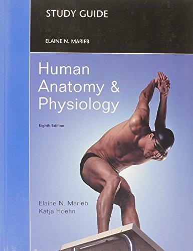 Study Guide for Human Anatomy and Physiology 8th edition by Marieb, Elaine N., Hoehn, Katja (2010) Paperback (Human Anatomy And Physiology Marieb Hoehn 8th Edition)
