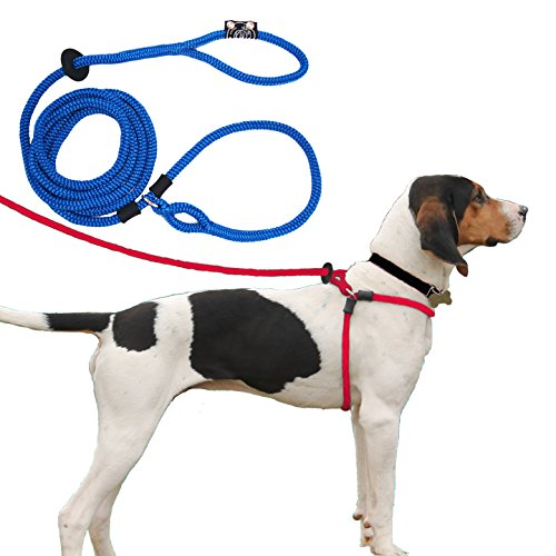 Harness Lead Escape Resistant, Reduces Pull Dog Harness, Medium/Large 40 to 170 lbs, Blue