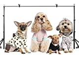 LYLYCTY 7x5ft Pet Dog Backdrop Cute Dressed Pet Dog Photography Background and Dog Lovers Photography Backdrop Props LYNAN239