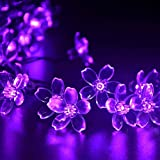 Rextin 23ft 50 LED Blossom Solar String Lights Purple Waterproof Outdoor for Gardens - Lawn - Patio - Christmas Trees - Weddings - Parties Decoration (Purple)