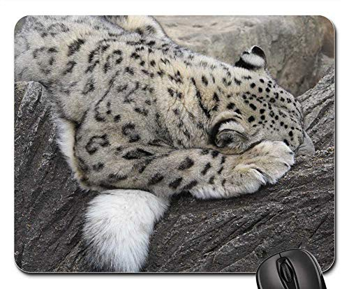 Mouse Pad - Snow Leopard Sleeping Cat Feline Tree Habitat Zoo