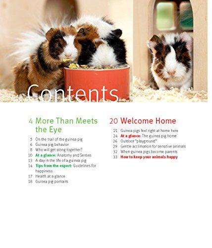 Guinea Pigs (Complete Pet Owner's Manual) 2