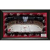 """NHL New Jersey Devils Signature Rink, Black, 24"""" x 16"""" x 4"""""""