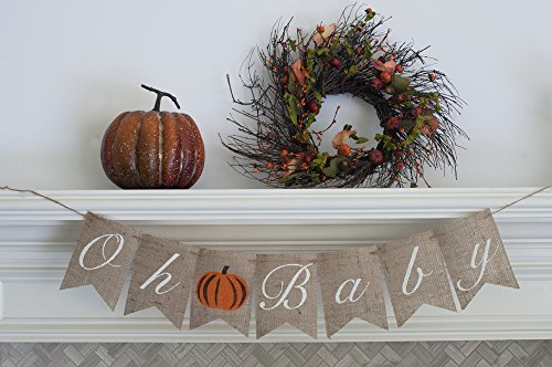 Fall Baby Shower Banner, Oh Baby Pumpkin Sign B353