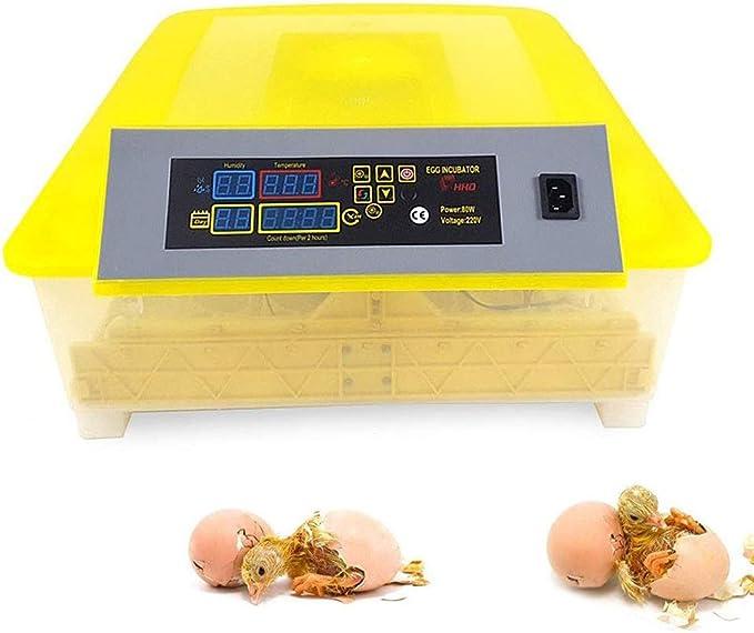 ZFF Incubadoras 56 Huevos Automática Volteo con Humedad Temperatura Controlar para Pollo Ganso Pato Pájaro Codornices (Size : 110V): Amazon.es: Hogar