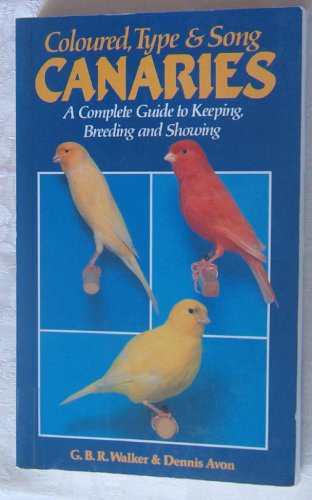 Birds Canary Pet (Coloured, Type and Song Canaries: A Complete Guide)