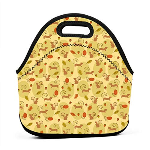 (Cute Squirrels Pine Nut Pumpkin Lunch Box Mom Bag Container for Women/Men Kids, Picnic/Beach/Work Lunch Organizer Compact Handbag Quick And Simple Organization)