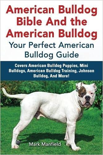American Bulldog Bible And The American Bulldog Your