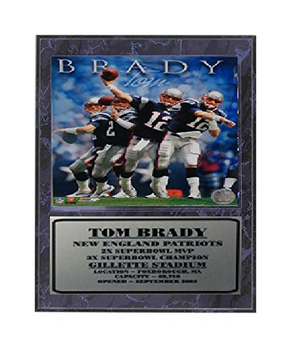 Encore Select 521 33 Nfl New England Patriots Tom Brady Stats Plaque  12 Inch By 15 Inch