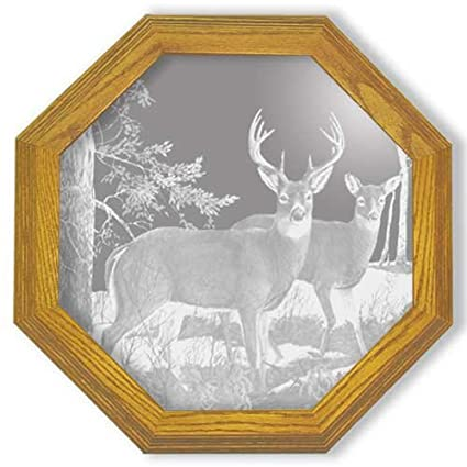 Amazon.com: Decorative Framed Mirror Wall Decor With Deer Hunting ...