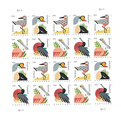 Coastal Birds Sheet of 20 Postcard Forever U.S. Postage Stamps by USPS: Office Products