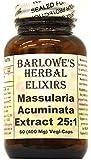 Massularia Acuminata Extract 25:1 - 60 400mg VegiCaps - Stearate Free, Bottled in Glass
