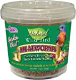 F.M. Brown's Fixins Mealworms, 3-Ounce, Tub of Fixins Mealworms, My Pet Supplies