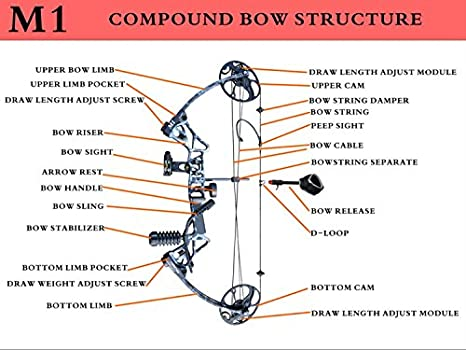 amazoncom compound bow only m1 19 30 draw length 19 70lbs draw weight 320fps ibo via express service delivered within 7days black sports