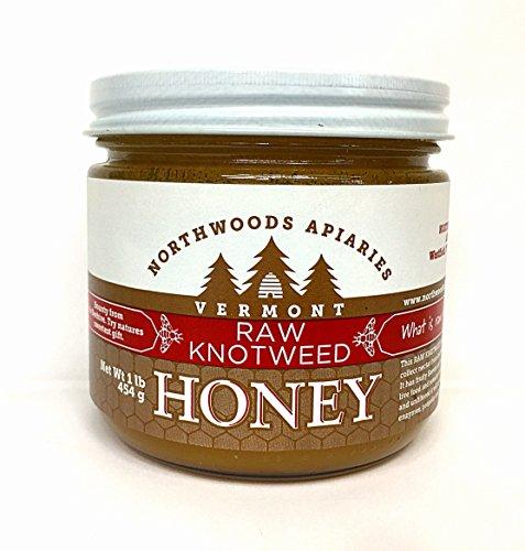 Vermont Raw Knotweed Honey, 1 lb round jar (Honey Champlain Valley)
