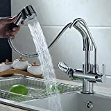 Jiuzhuo Single Handle Single Hole Pull-Down Sprayer Kitchen Faucet with Water Filtering,Chrome