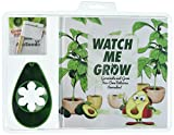 Watch Me Grow - Germinate and Grow Your Own Delicious Avocados!