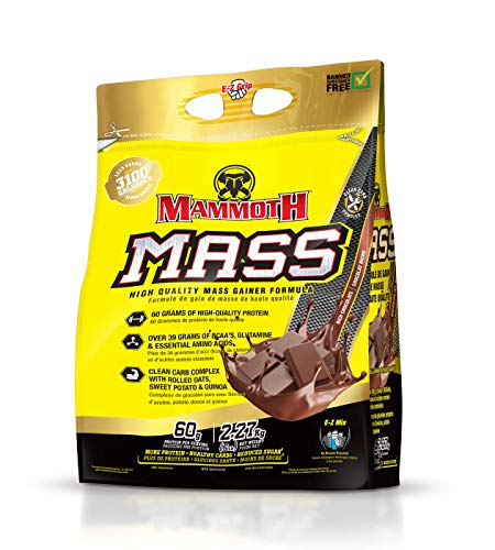 Mammoth Mass Chocolate 5lb
