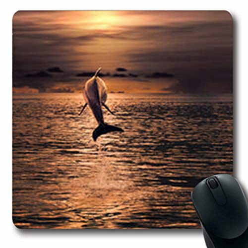 Pandarllin Mousepads Flipper Dolphin Jumped Water Sunset Time Wildlife Nature Hawaii Oblong Shape 7.9 x 9.5 Inches Oblong Gaming Mouse Pad Non-Slip Rubber Mat (Dolphin Tropical Mirror)