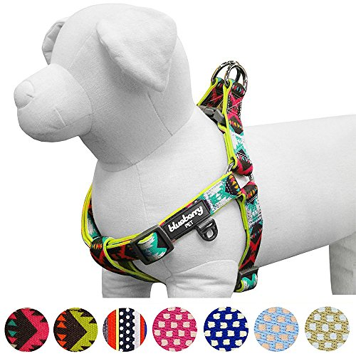 Nylon Two Step Dog Harness (Blueberry Pet 2 Colors Soft & Comfy Step-in Vintage Tribal Pattern Padded Dog Harness, Chest Girth 23.5