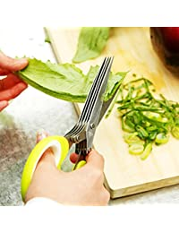 Want 5 Blades Stainless Steel Kitchen Herb Craft Shredding Paper Cutting Scissors deal