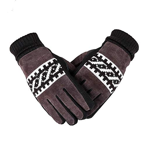 (Men's Plus Velvet Thickening Real Pigskin Warm Gloves Fashion Non-Slip Windproof Riding Gloves (Color : Brown))