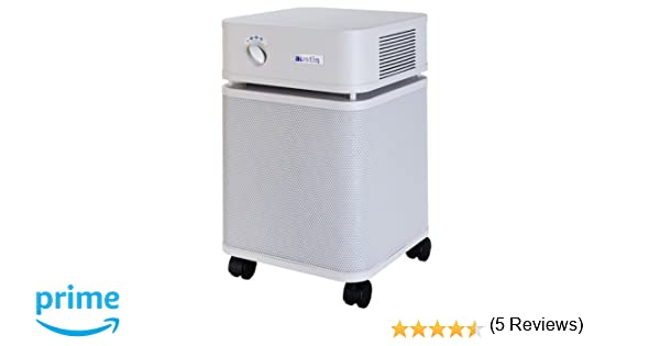 Amazon.com: Austin Air B402C1 Standard Bedroom Machine Air ...